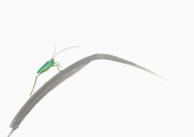 20150711昆虫