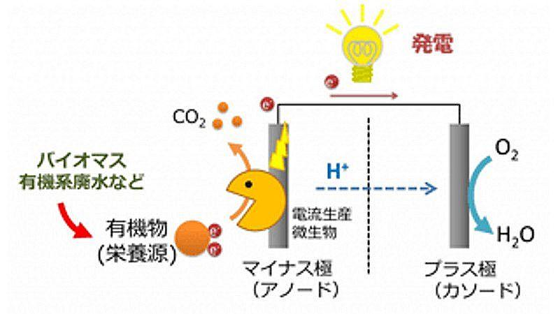 20160419微生物燃料電池の原理