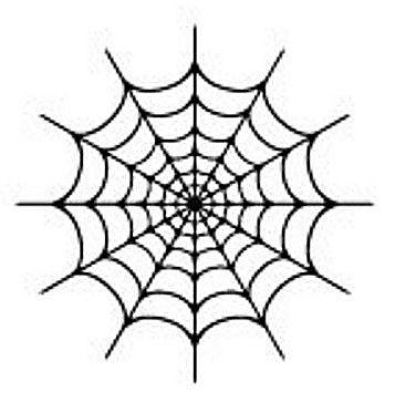 蜘蛛の巣20160806