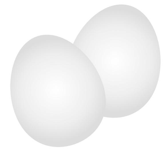 卵の殻20170116